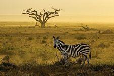 ALABenny-Rebel-Fotoreise-Kenia