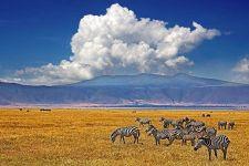 ALBenny-Rebel-Fotoworkshop-Tansania
