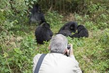 BC-Benny-Rebel-Fotoreise-Ruanda-Gorrila-Tourismus