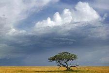 BCBenny-Rebel-Fotoworkshop-Tansania
