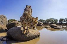 BHBBenny-Rebel-Fotoreise-Suedafrika