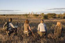 MBA-Benny-Rebel-Fotoreise-Suedafrika-Walking-Safari