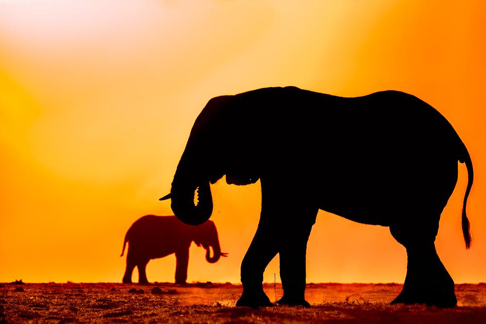 Benny Rebel, Fotografie, Afrika