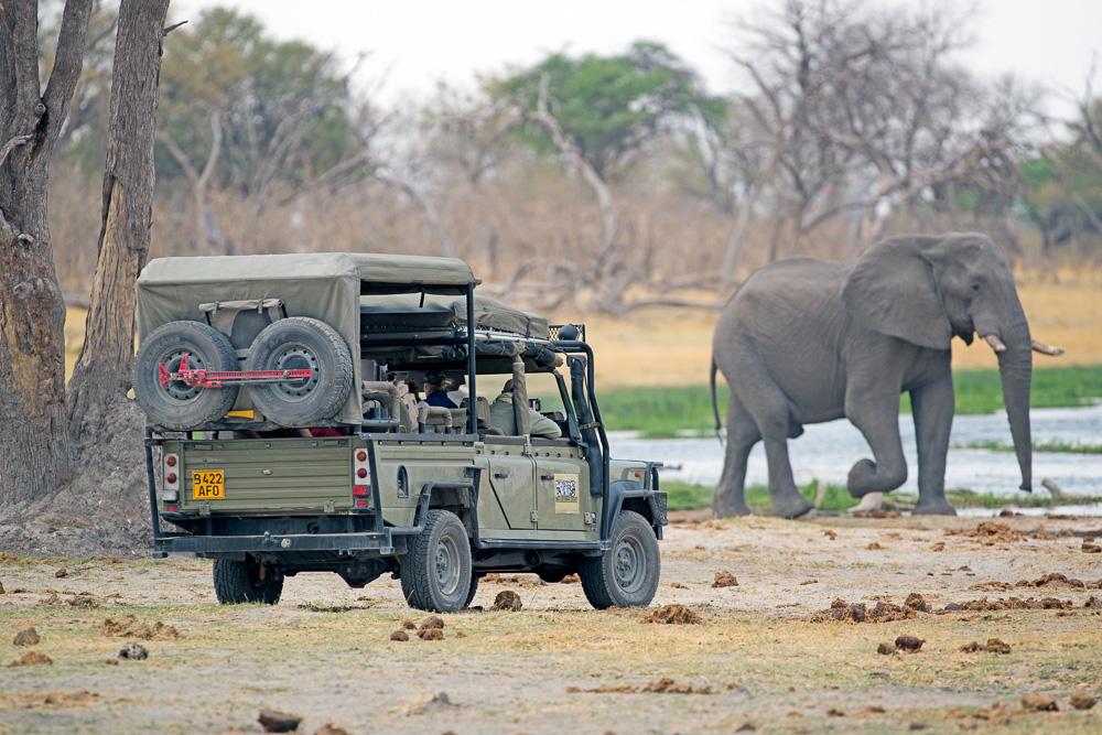 Simbabwe und Botswana, Fotosafari,