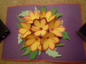 ดอกไม้7ดอก