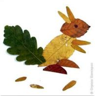 leaf squirrel