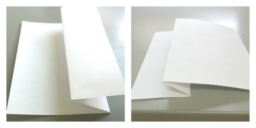 fish paper-folding