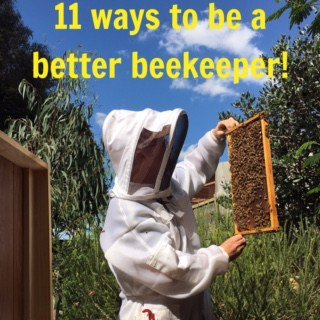 Eleven ways to be a better beekeeper!