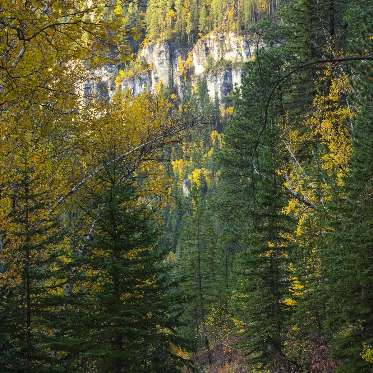 Experience Spearfish Canyon South Dakota
