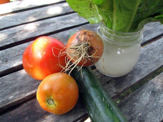 cherubino's veggies