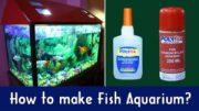 super glue fish tank - benson