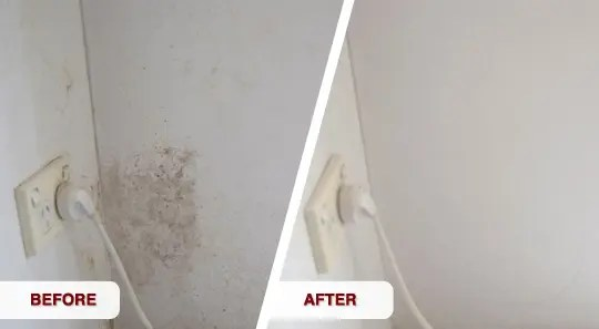 mould cleaning adelaide