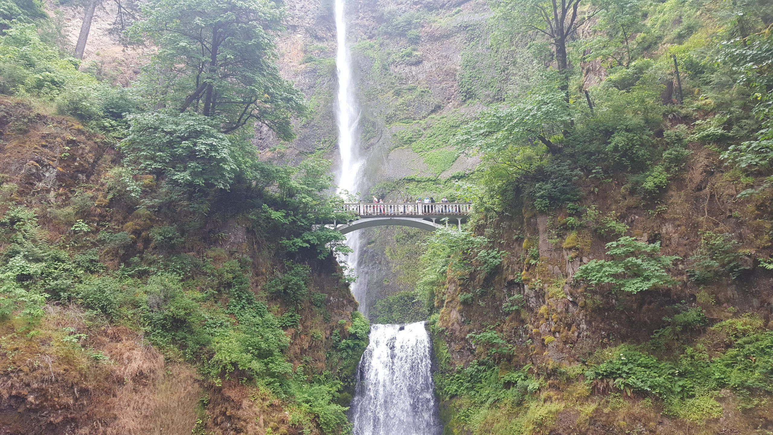 Multnomah Falls. A classic tourist spot
