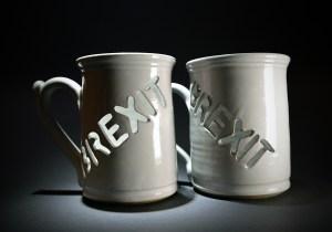 Brexit mug by Lee Cartledge