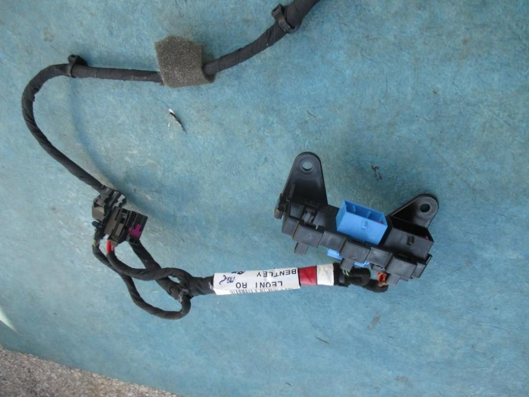 bentley flying spur wiring diagram 2005 ford expedition vacuum left rear door wire harnes