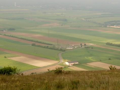 Agrar Landschaft im Marchfeld
