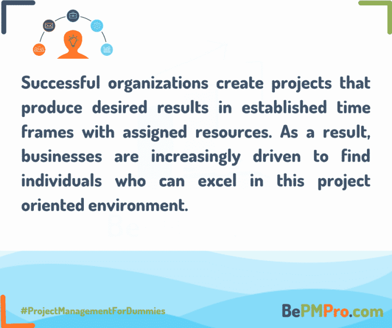 successful organizations are those which create successful projects