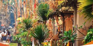 Mengetahui Definisi dan Ciri-Ciri Desa Tradisional