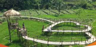 Daftar Rekomendasi Desa Wisata Jawa Tengah Yang Paling Populer