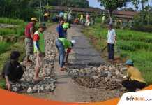 Beberapa Fungsi Desa Yang Bisa di Optimalkan Berdasarkan Potensinya