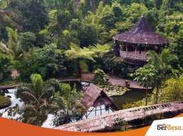 Desa Wisata Pertanian, Edukasi Masa Kini