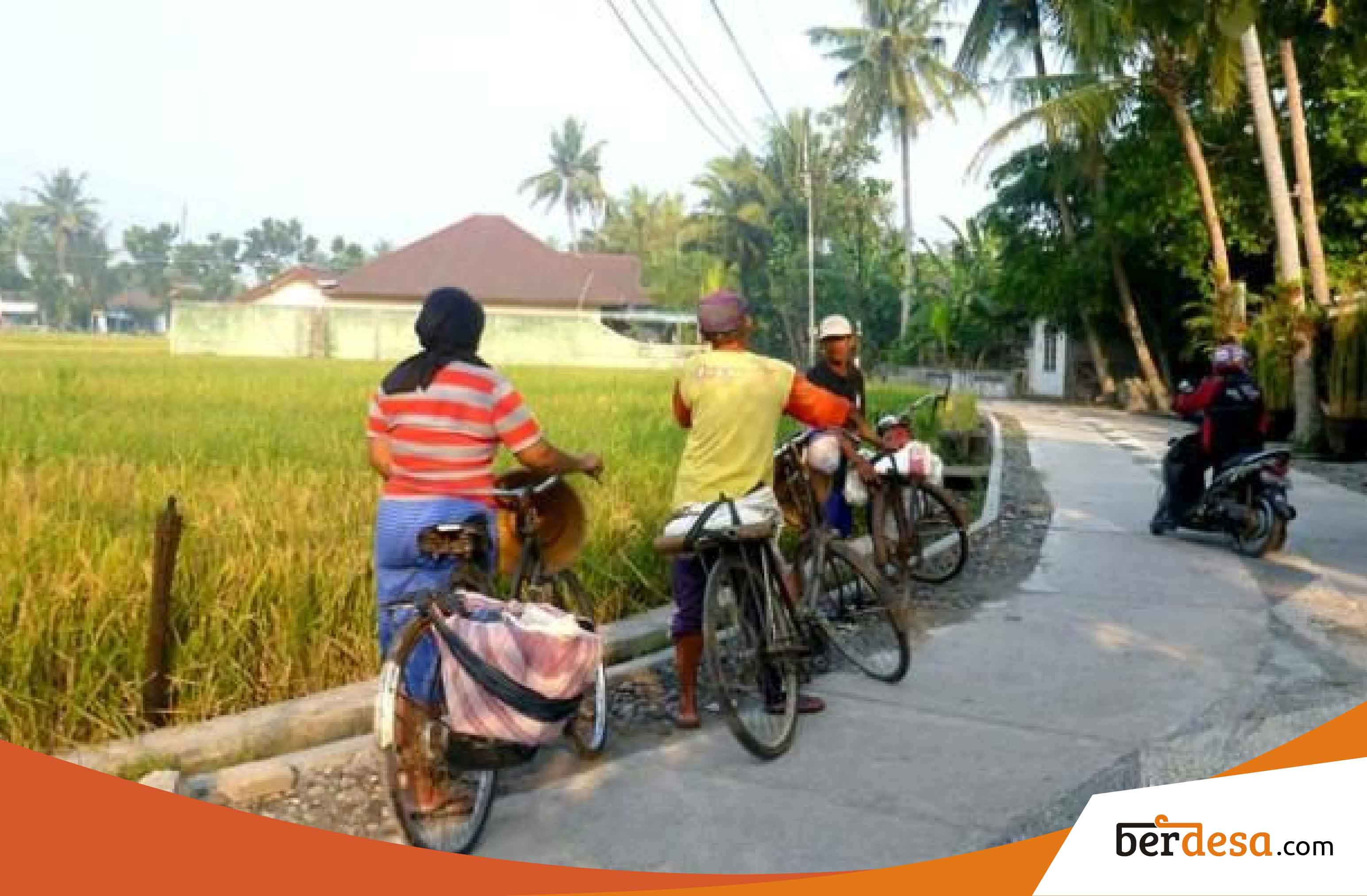 Peluang Usaha Pertanian Di Desa Berkembang Yang Sangat Menguntungkan – Berdesa