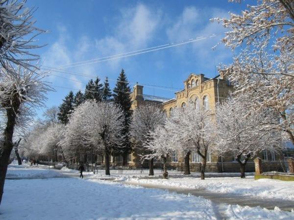 Зима у Бердичеві: водії ігнорують правила дорожнього руху, а працівники ДАІ – порушників