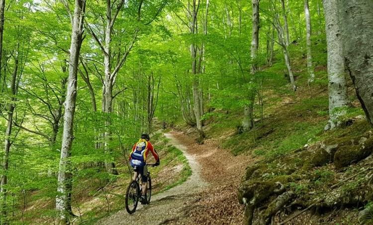 un bel giretto nella natura in bici domenica a bergamo