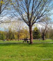 parc colombière dijon - bergamote family (10)