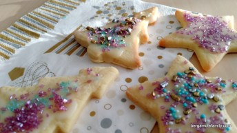pâtisserie noel - usborne - bergamote family (10)
