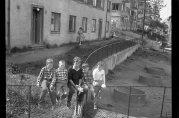 Guttene på gjerdet. Blekenberg sommeren 1961. Fotograf ukjent. Arkivet etter Bergens Arbeiderblad.