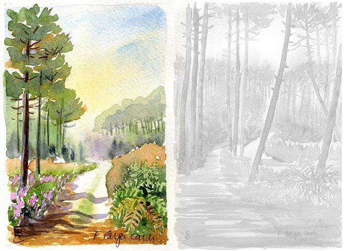 Aquarelles Les Landes Artiste Peintre Francette