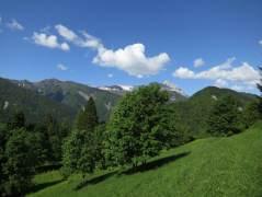 Wandern-Sauris_2013-15