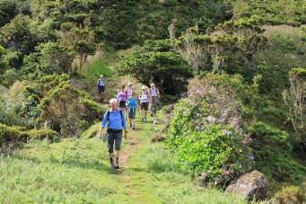 Wanderung zur Faja dos Cumbres auf den Azoren
