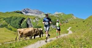 Höhenhalbmarathon 2017 - Marathon mit Aussicht