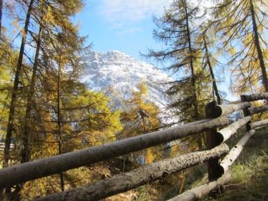 Wanderung Grauner Berg Suedtirol IMG_5879