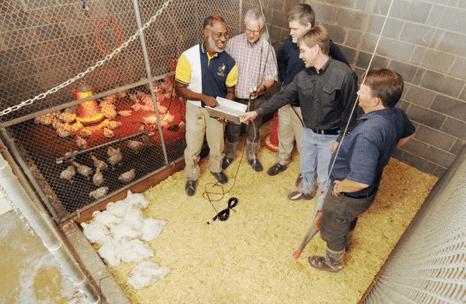 PENERJEMAH bahasa hewan ternak