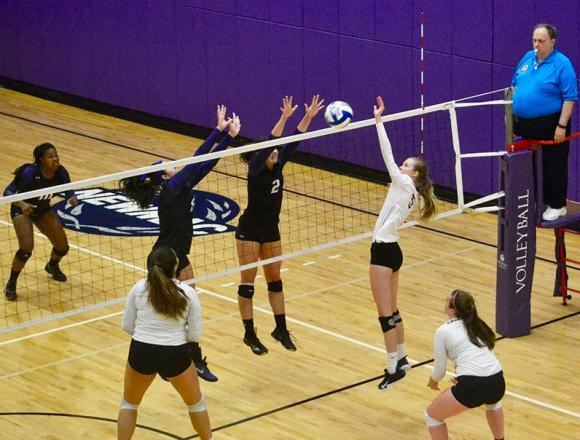 Women's volleyball: Lions have new mentality for final matches