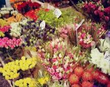 Columbia Road Flower Market 8