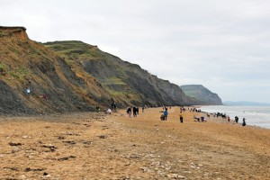 Jurassic Coast - Charmouth Beach - Families Fossil-Hunting