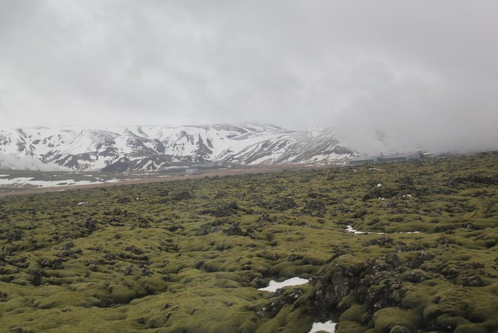 Iceland: Glaciers, Waterfalls, and a Banana Plantation