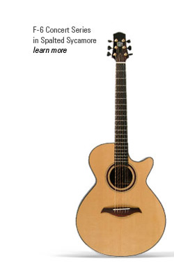 Image result for Image of a guitar with 6 strings.