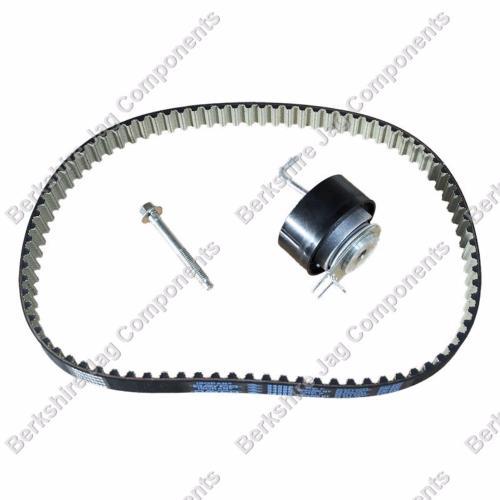 X350 Diesel Rear Injection Pump Timing Belt Kit C2C24601