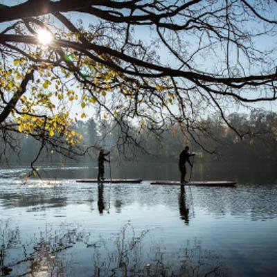 Stand-Up Paddling on a Brandenburg Lake