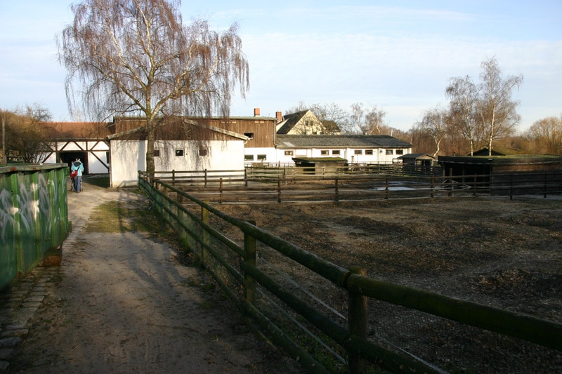 Bild Kinderbauernhof Lübars in Berlin Reinickendorf