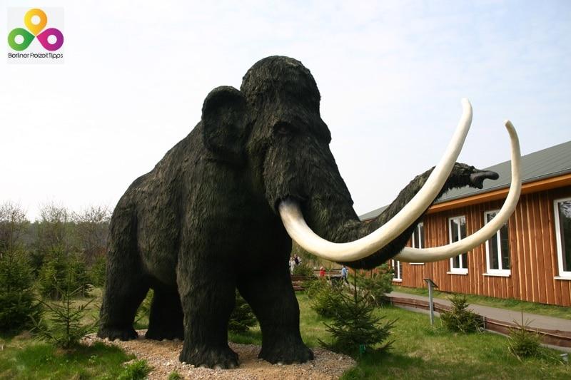 Tierpark und Freizeitpark Germendorf Oranienburg bei Berlin