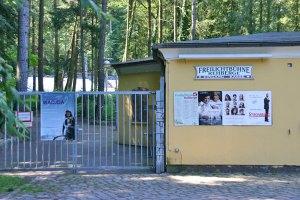 Freiluftkino in Volkspark Rehberge