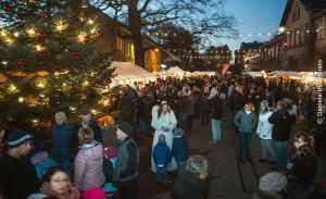Wochenend- Weihnachtsmarkt in den Späth'schen Baumschulen