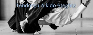Tendoryu Aikido in Berlin Steglitz