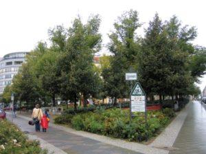 Der neue Schleidenplatz. Die traurigen Tatsachen liegen hinter dem satten Grün. (Foto: Wikipedia)